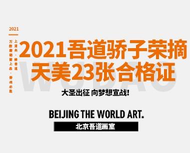 2021吾道骄子荣摘天津美术学院23张合格证!A档证9张!B档证6张!最高分274分!