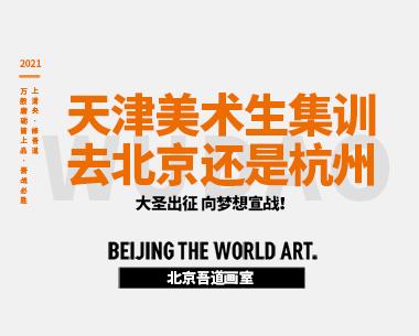 天津美术生集训去北京还是杭州(去哪家画室集训比较好)