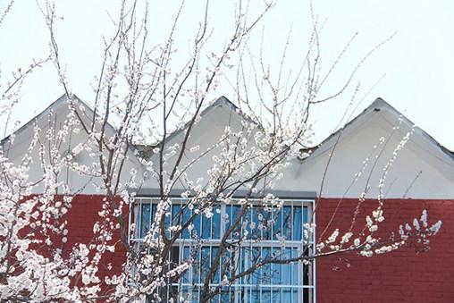 北京美术生培训学校校园环境